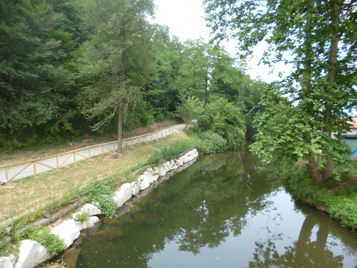 Difesa di sponda sul fiume Olona con palificata viva a parete doppia