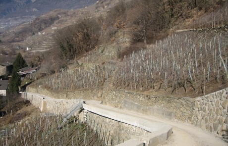 01 - Panoramica Zona 1