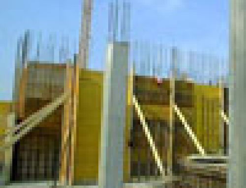 2006 – Principali attività svolte